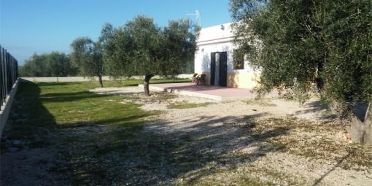 Gargano – Comune di Monte Sant'Angelo (FG)